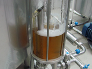 BrewHouse BlonderBeer 400 003